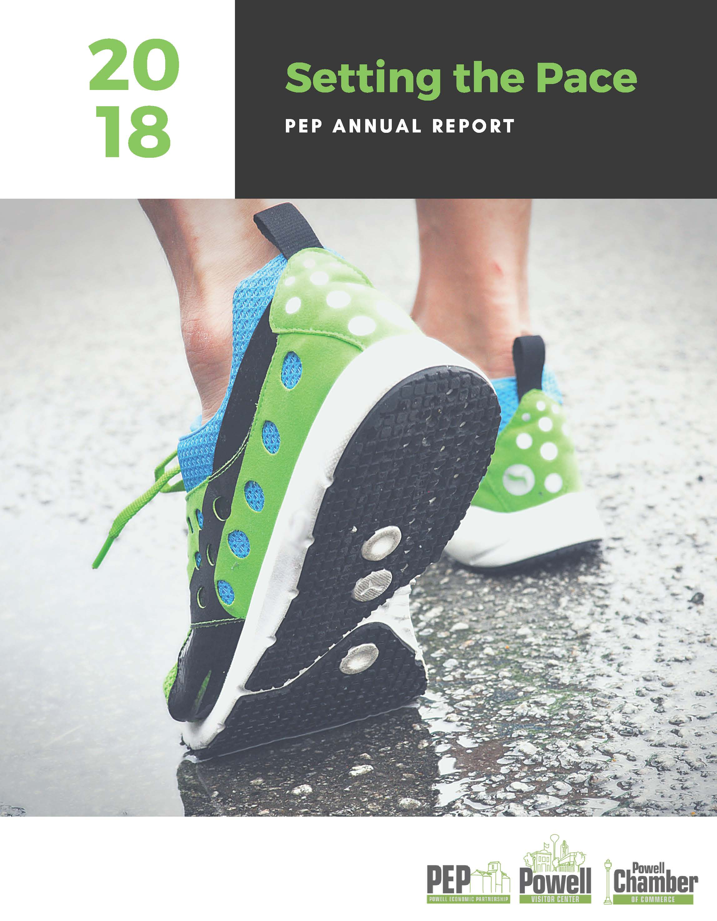 PEP_Annual Report2019