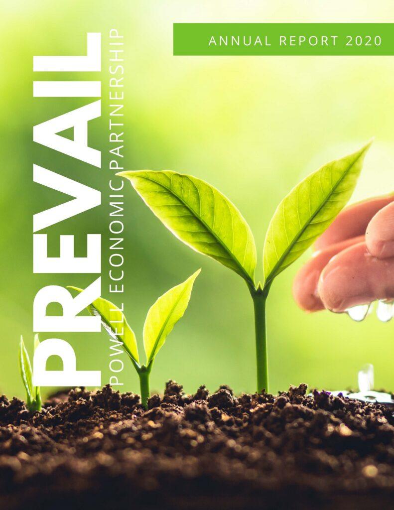 Prevail_ANNUALREPORT 2020 - Copy_Page_1